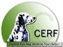 Canine Eye Registry Foundation